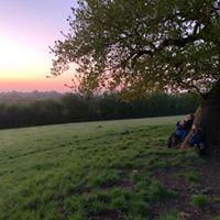 Sunrise walks Bristol