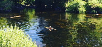 wild swimming somerset